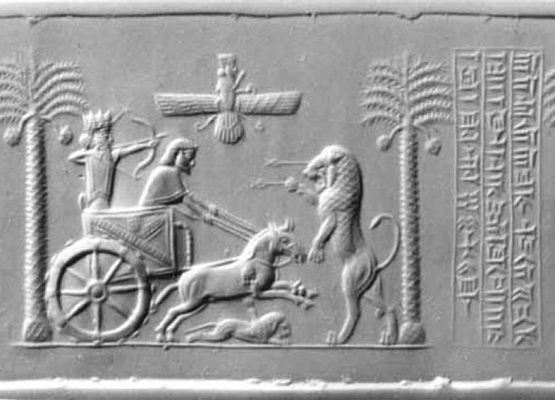 caspian horse history , تاریخچه اسب کاسپین
